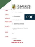 INFORME N 02.docx