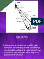Fisioterapi-Neuromuskular-dan-Psikiatri-Pertemuan-13.ppt