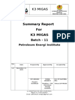 Summary Report WI 1