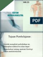 Muskulo Skeletal