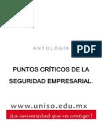 PUNTOS+CRITICOS+DE+LA+SEGURIDAD+EMPRESARIAL