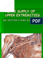 Upper Extremities Nerve Supply
