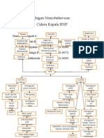 Kel. 6 Konsep MAP Cidera Kepala HNP