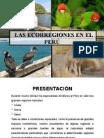 Las Ecorregiones Del Perú