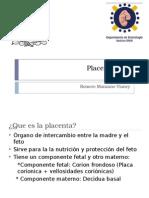 Placentación