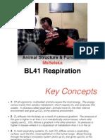 BL41 Respiration T&A