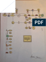 core genogram and ecomap project