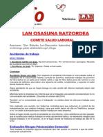 Info Lan Osasuna