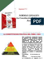 Separata 1 -Constitucion Politica