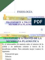 4+FISIOLG.TRANSPORTE+MEMBRANA+CELULAR