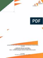 ATPS Estrutura e Analise Das Demonstrações Financeiras Completa