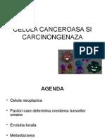14. Celula Canceroasa Si Carcinogeneza