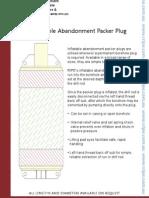 Inflatable Abandonment Packer Plug