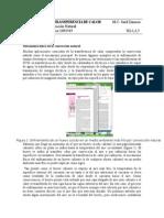 P9-LTC (1).docx