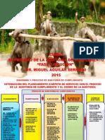 cursoauditoradecumplimiento-faseejecucion.pdf