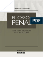 Caso Penal-Pedro Angulo Arana