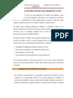 II Estudio Tecnico, Organizacional Ambiental y Legal de Jarabe de Yacon