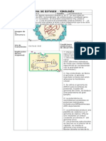 FICHA DE ESTUDIO _ VIROLOGI_A.docx