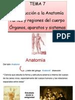 Introducción a La Anatomía