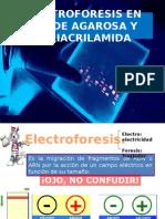 Electroforesis en Gel de Agarosa y Poliacrilamida