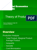 Theory of Production