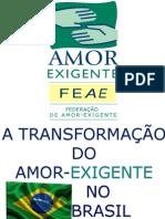 1-A transformação do AE no Brasil.pdf