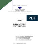 Iniciacion Universitaria e Historia.docx(Ensayo)