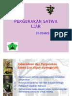 05. Pergerakan Satwa Liar