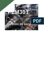 PLM301 Gestión de Servicios