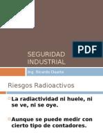 Seguridad Industrialnuclear