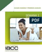 01 Anatomofisiologia Humana