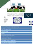 Arcelor Mittal Merger Case- Cross Culture Management