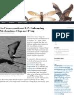 An Unconventional Lift-Enhancing Mechanism