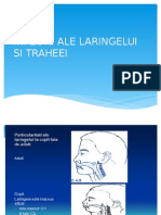 CURS 2 BFK Infectii ale laringelui - traheei     +Bronsiolita