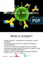 Antigen & Antibodies