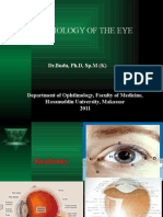 12-New Physiology of the Eye