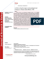 Anesthetic efficacy of clove oil and its impact on hematological and biochemical changes in Channa striatus (Bloch, 1793)