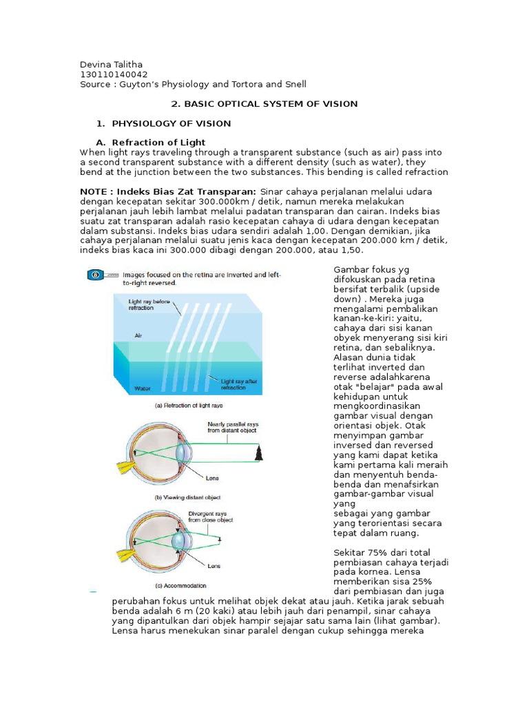 sisteme optice de viziune