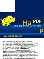 Hadoop A Big Picture of Big Data