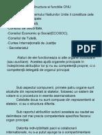 Structura Si Functiile ONU