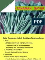 Budidaya Tanaman Sayur
