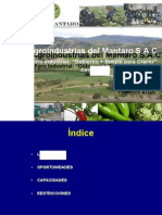 FedericoArias (1).docx