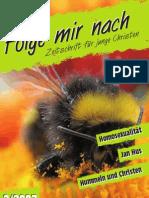 2007_Heft2