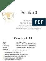 Pemicu3_kel14_respi