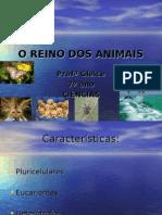 O REINO DOS ANIMAIS652009223657.ppt