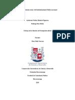 Evaluación y Estado Actual Del Endeudamiento Publico Nacional
