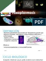 7. Toxoplasmosis