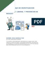 Trabajo de Investigacion Prevencion de Riesgos