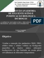 Apresentação Biodigestor BIOGAS