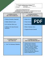 listas definitivos candidaturas